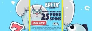 Artic Spins: 100% Bonus + 25 Free Spins!